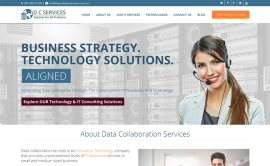 Data Collaboration Services